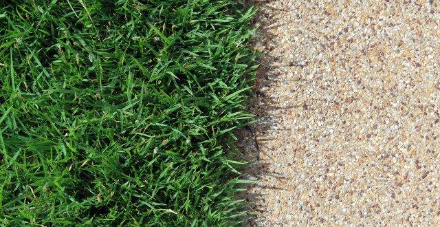Pavimentazione del giardino alcune idee per migliorarla for Prato senza manutenzione