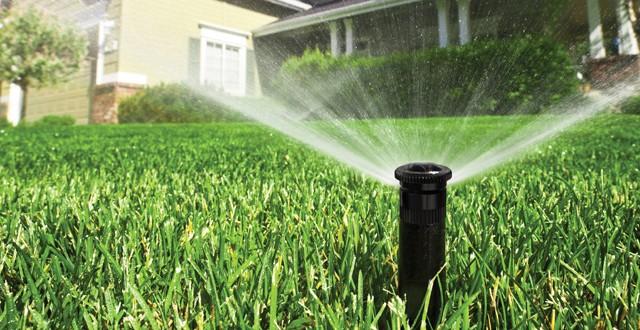 Irrigazione giardino consigli per risparmiare arreda il for Irrigazione piante