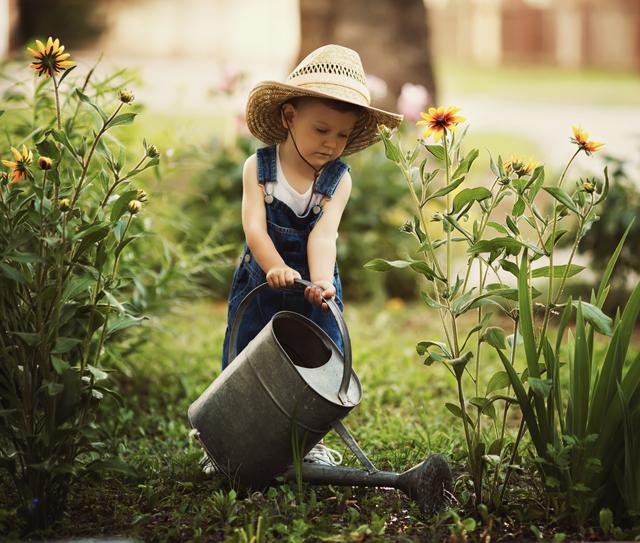 Irrigazione giardino consigli per risparmiare arreda il for Temporizzatore irrigazione giardino
