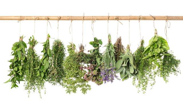 arredo giardino erbe