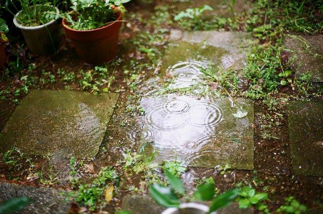 acqua piovana in giardino