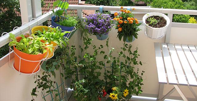 Arredare il balcone in primavera idee e suggerimenti for Arredare un terrazzo con piante e fiori