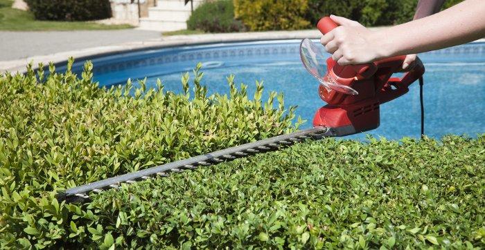 cura del giardino e del verde