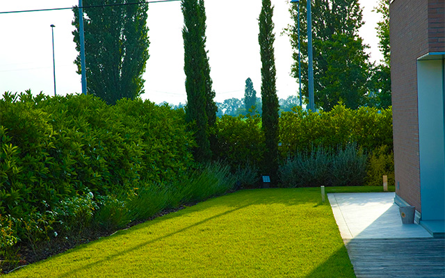 privacy in giardino con siepe