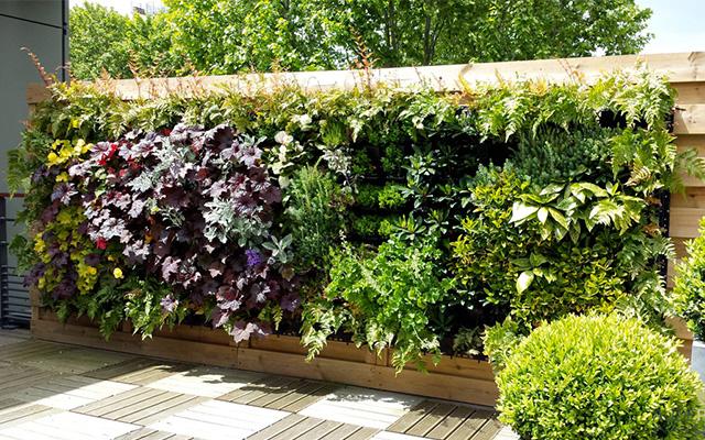 creare privacy in giardino