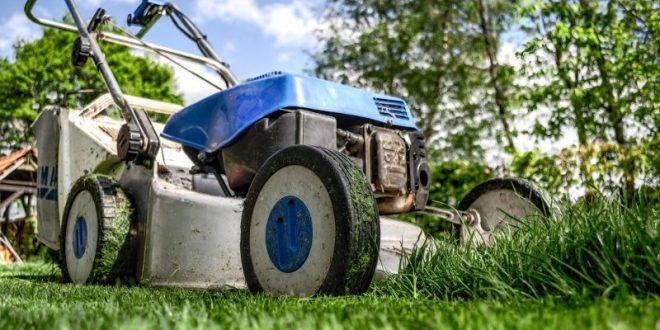Come sistemare il giardino trascurato di casa in 5 semplici passi