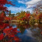 Il giardino giapponese in autunno con alberi dalle foglie rosse