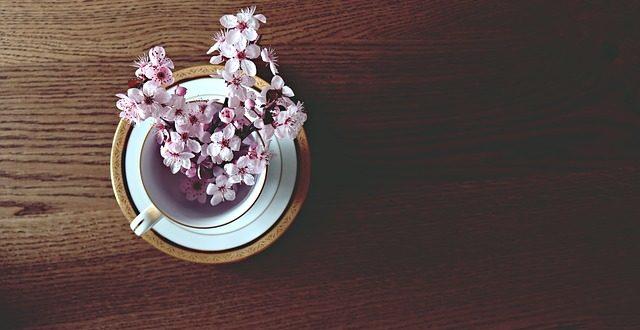 Tazzina con fiori di ciliegio