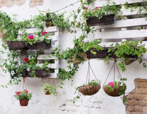 pallet vasi fiori