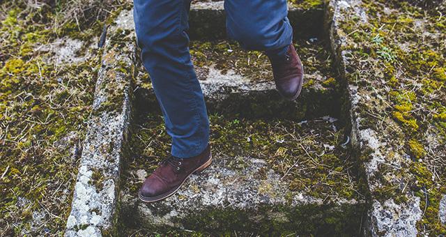 Quattro passi in giardino