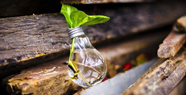 Lampadine a incandescenza come oggetti riciclati