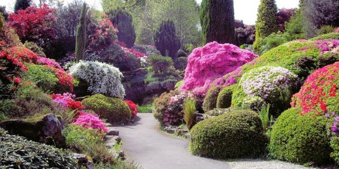 tipi di giardino