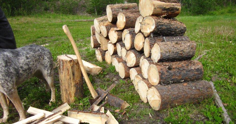 spaccare la legna da ardere per farla asciugare meglio