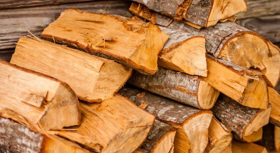 lascia asciugare la legna