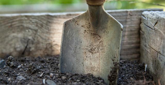 cura zappa per giardinaggio