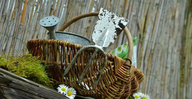 manutenzione attrezzi giardino