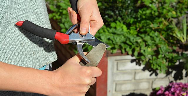affilare-attrezzi-da-giardino