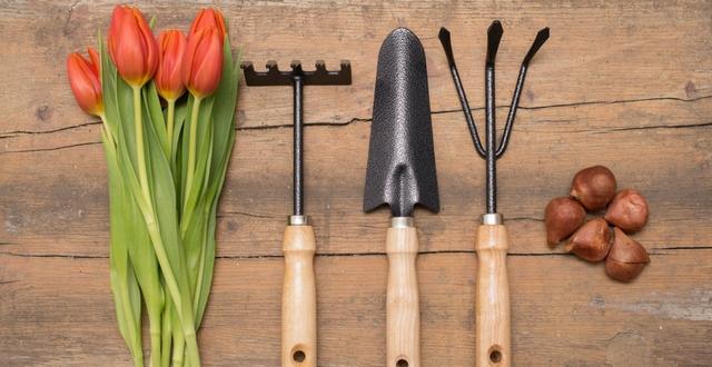 Attrezzi da giardinaggio arreda il giardino - Attrezzi da giardino nomi ...
