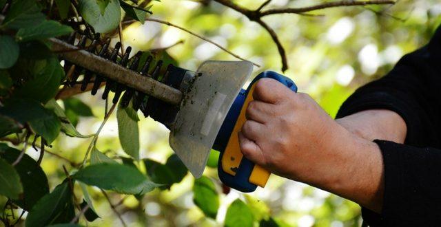 attrezzi da giardino professionali