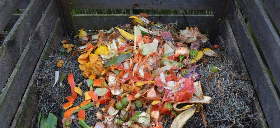 rifiuti per compostaggio domestico