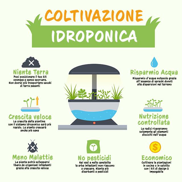 coltivazione-idroponica-vantaggi-infografica