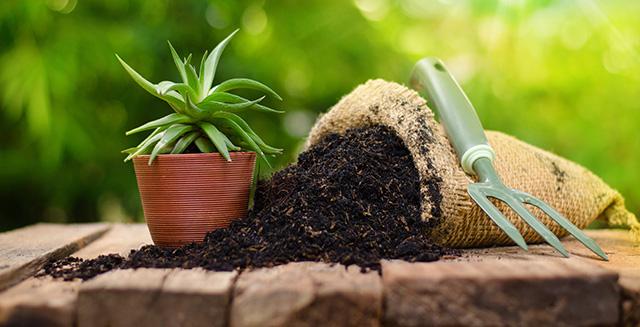 cosa-fare-in-giardino-ad-agosto-utilizzo-concime