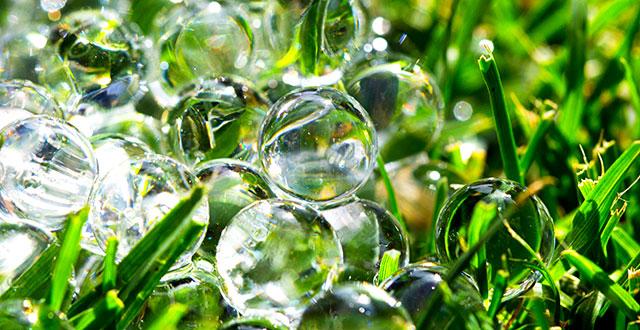 acqua-gelificante-per-piante-irrigazione-durante-le-vacanze