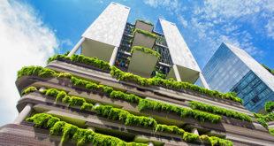 coltivazione-idroponica-in-casa-e-in-appartamento