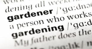 giardinaggio-fai-da-te-7-termini-per-giardiniere-pro