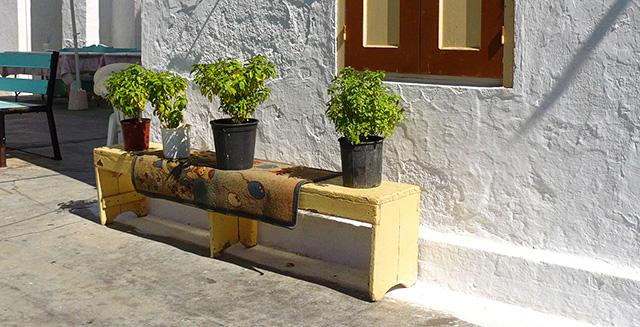 giardinaggio-fai-da-te-esposizione-solare