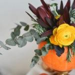 zucca-fiori