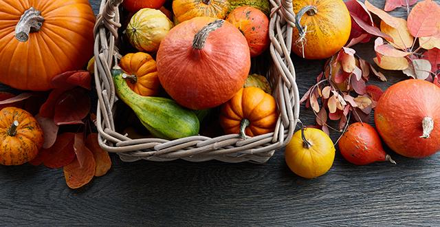 cestino-zucche-autunno