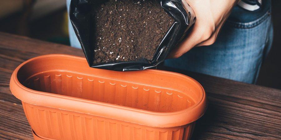 terreno per coltivare le erbe aromatiche in vaso