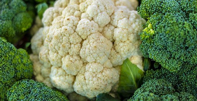 cosa piantare a ottobre cavolfiore broccoli