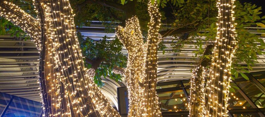 luci per decorare il giardino per natale