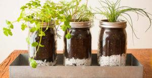 idee-giardino-fai-da-te-erbe-aromatiche-barattoli-vetro