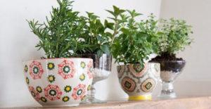 idee-giardino-fai-da-te-erbe-aromatiche-tazze