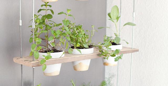 idee-giardino-fai-da-te-erbe-aromatiche-vasi-sospesi