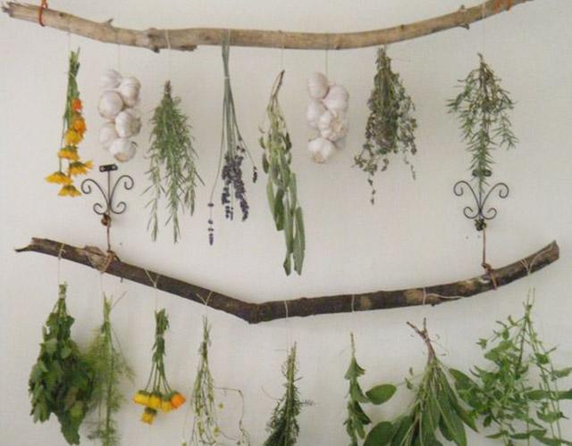 idee-giardino-fai-da-te-ramo-appendere-erbe