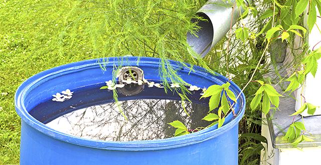 raccolta-acqua-piovana-per-risparmiare-acqua-in-giardino