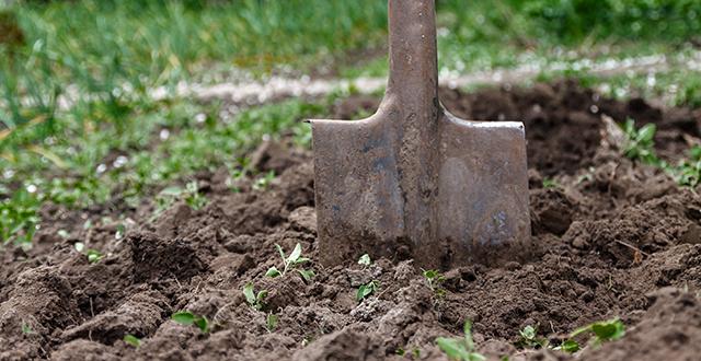suolo-adatto-a-risparmiare-acqua-in-giardino