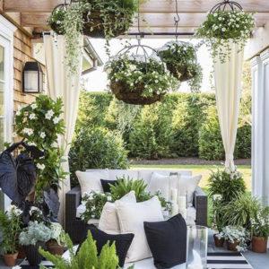 piante-sospese-pergola-di-giardino