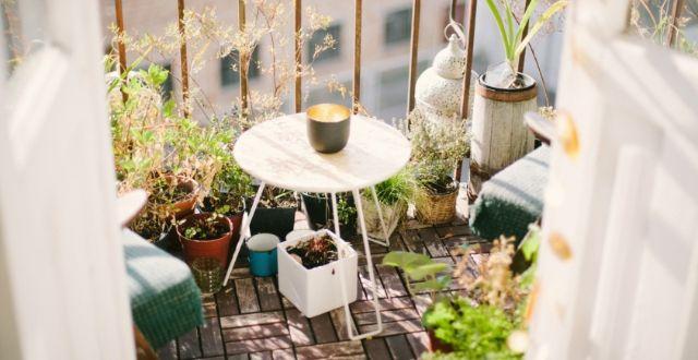 Arredare un balcone stretto e lungo con le piante arreda for Arredare il giardino con le piante