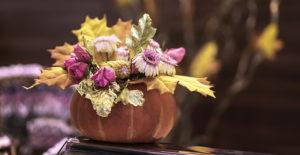 fiori-secchi-zucca-decorazioni-autunnali