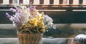 fiori-secchi-come-decorazioni-autunnali