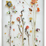 fiori-secchi-decorazioni-autunnali