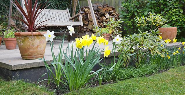 rendere-bello-un-giardino-con-i-fiori