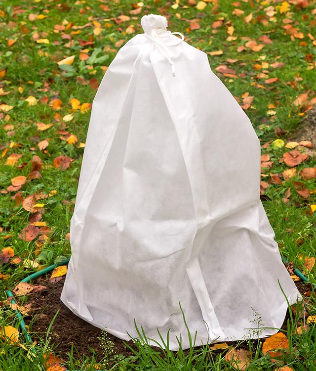 come proteggere le piante dal freddo con copertura