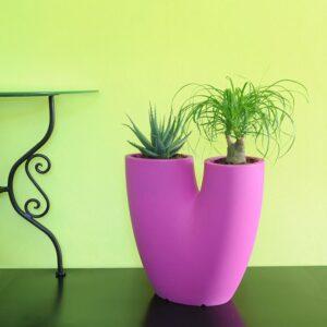 Idea regalo per amante giardinaggio